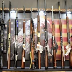 Who Sells Rifles in Little Falls, NY, and all Central NY?